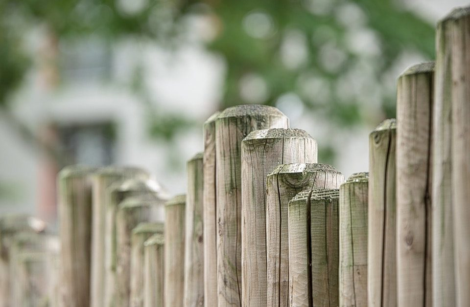 Let's find out all you need to know about fence palings
